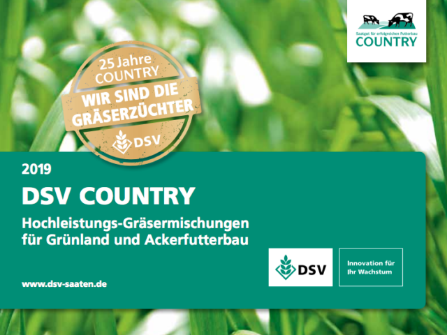 dsv-country-640x480.png